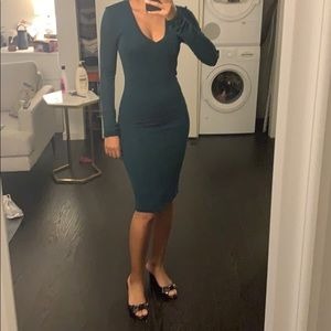 BCBG Fitted Dress